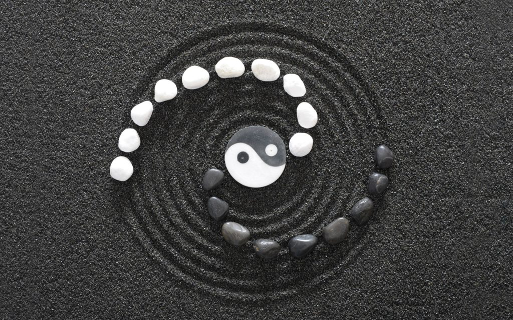 Pair Coaching – The Yin and Yang of Scrum Masters